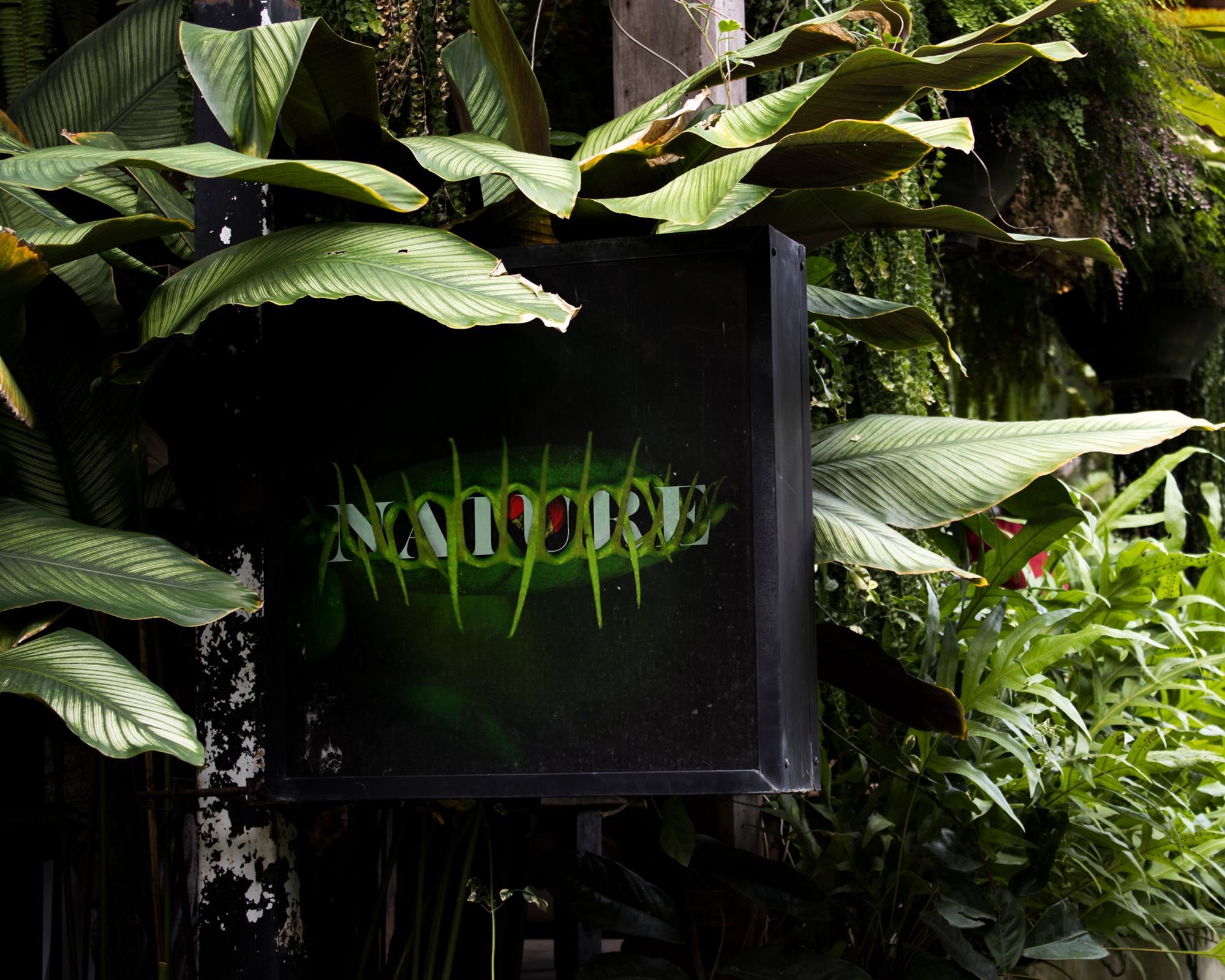 Nature – Fressen und gefressen werden